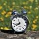 Alarm Clock Outside in Springtime