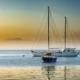 Sailboats in the Sunrise